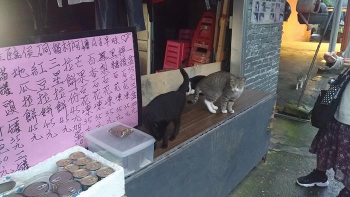 台湾 猫村 猴硐